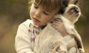 Niños y mascotas: beneficios de que los niños crezcan con un animal en casa