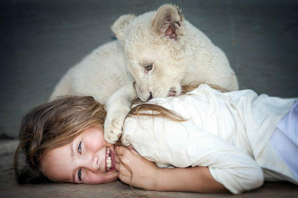 Los grandes felinos son mascotas peligrosas exóticas