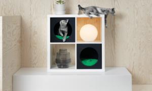 Muebles para mascotas: un lugar acogedor para ellos también es importante