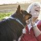 10 ventajas y desventajas de tener un perro que tienes que tener en cuenta